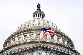 Capitol Building flag