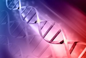 Genome 1